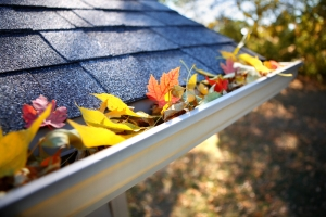 gutter_withleaves_closeup