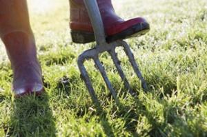 landscaper-boots