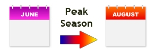 peak_tick_season