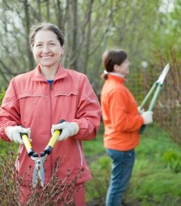 women_gardening_shutterstock_135397481