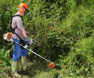 worker_clearing_brush