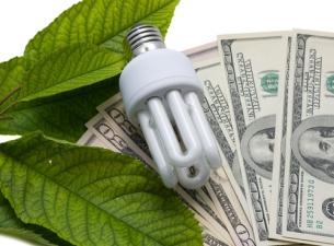 bulb_moneyshutterstock_131657213