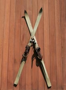 skiis-shutterstock_3257898
