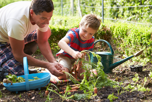 son-father-garden-yardwork-shutterstock_156648332