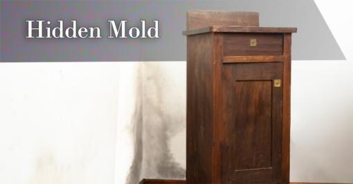 hidden-mold-fb--shutterstock_231594136